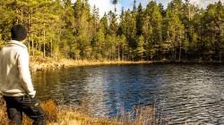 Wilderness-Treatment