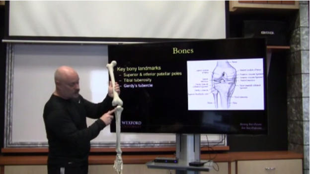 online-biomechanics-human-movement-course